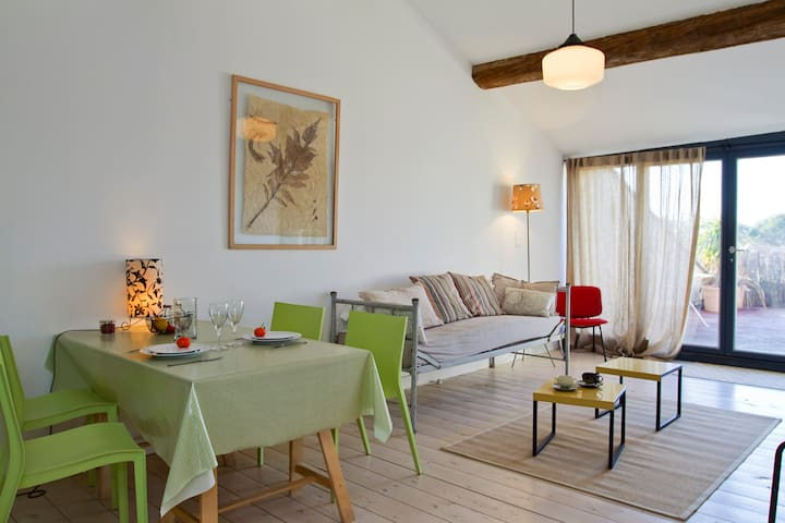 CHARMING SUNNY FLAT WITH TERRACE - Sanilhac-Sagriès - Apartment