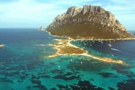 Tavolara bed & breakfast sull'isola - 올비아