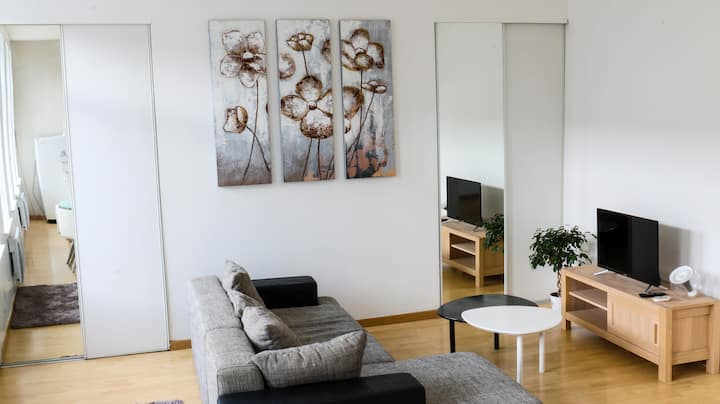 Beautiful downtown apartment bright