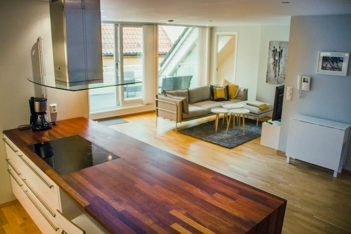 Big,modern apartment, terrace, close to everything