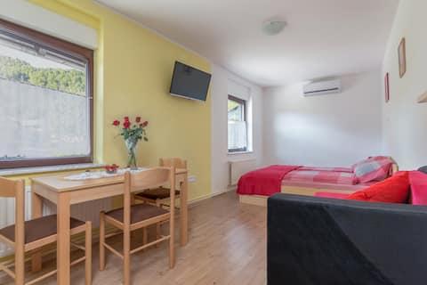 Apartmaji Repinc Bled