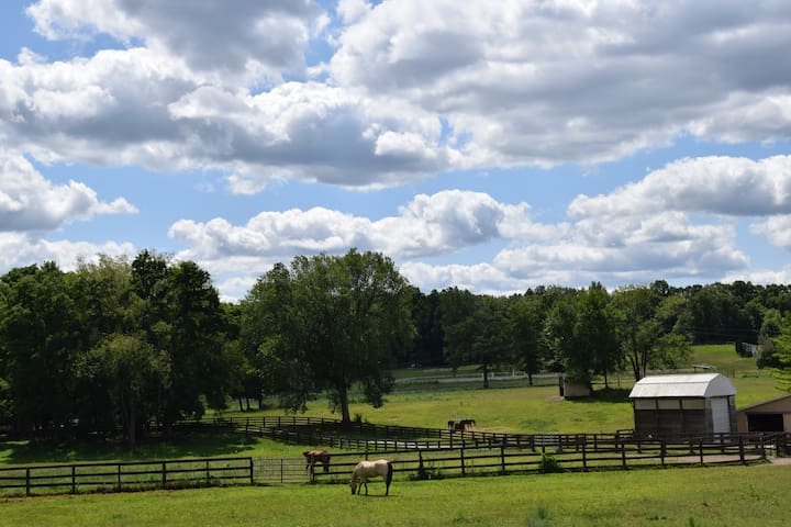 Stay on a Horse Farm for Groups: 2 Cabins