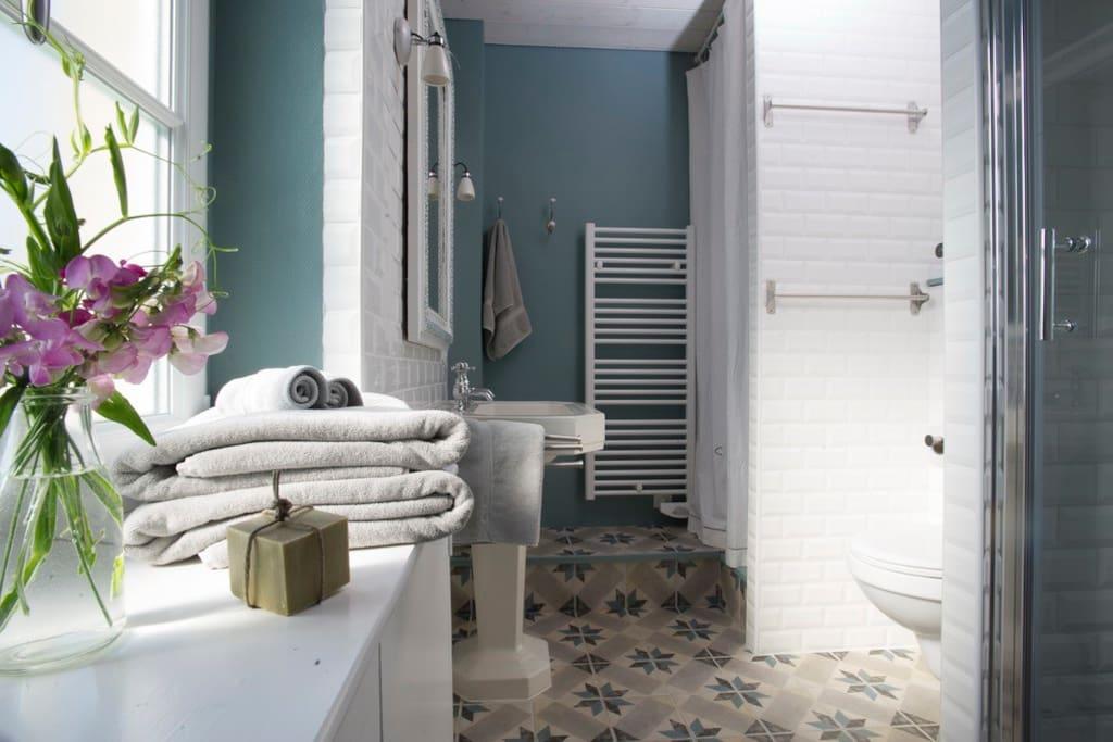 Salle de bain (douche) + Lave Linge et Sèche Linge