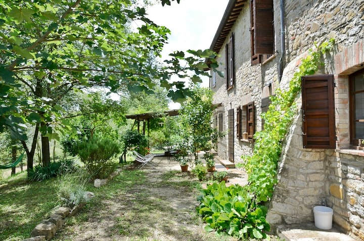 """Il Mandorlo"", lovely country house, sleep 6/8"