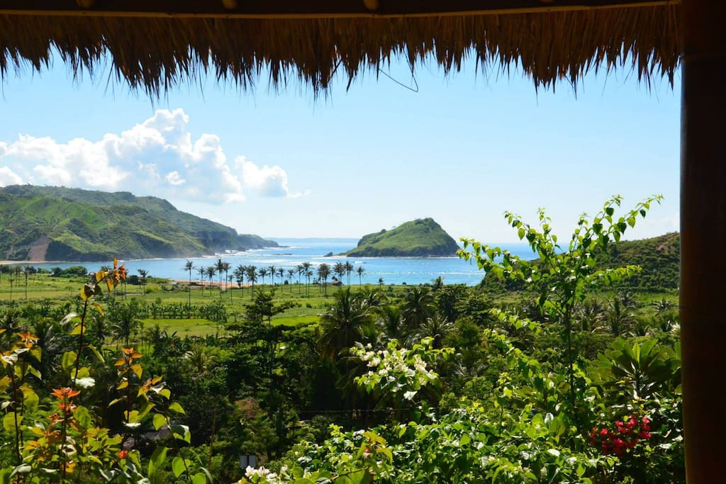 The view from your Bungalow