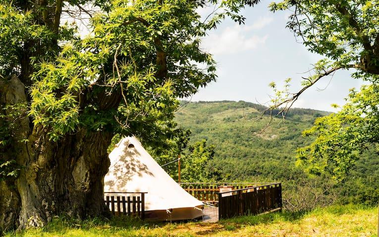 Podere di Maggio - Glamping tent 1