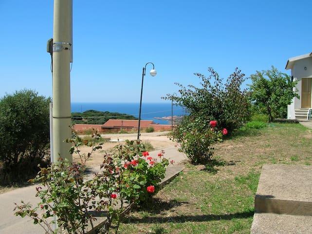 Spazioso quadrilocale doppi servizi - Province of Olbia-Tempio - Maison