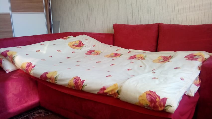 Vesna's cosy apartment - Maribor - Apartamento