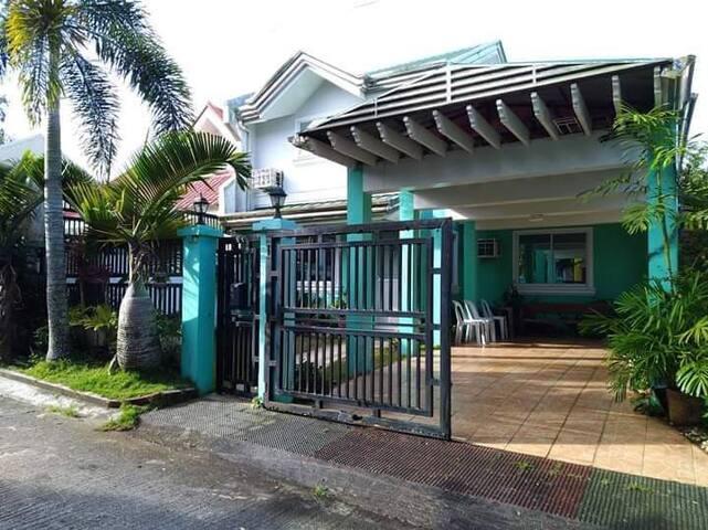 Elsa Transient Green House