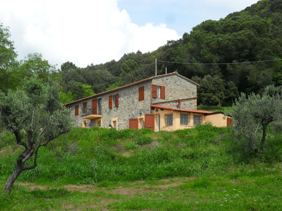 Stone guest house la ciliegiola houses for rent in for Tuscan view guest house