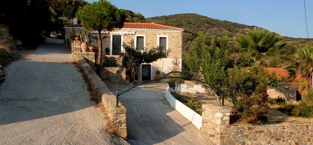 Elika's House