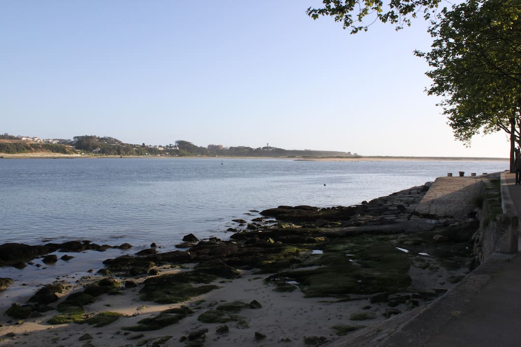 River beach and a natural park, 2km to the south