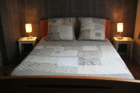 CHAMBRE AGREABLE  AGEN CENTRE VILLE - Agen - Bed & Breakfast