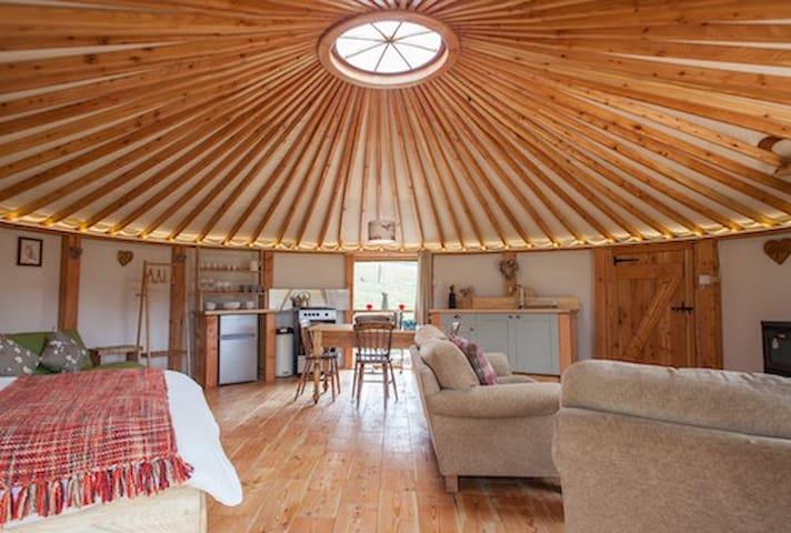 Owl Wooden Yurt Gwdihw