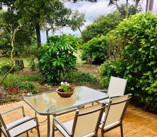Private rear courtyard with direct access to beach set in beautiful bush-land environment with local friendly Bush Turkeys