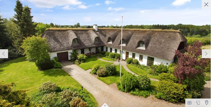 Cosy thatched house close to Billund and Vejle