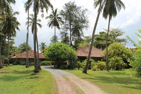 Leana Lagoon Cottages - Negombo
