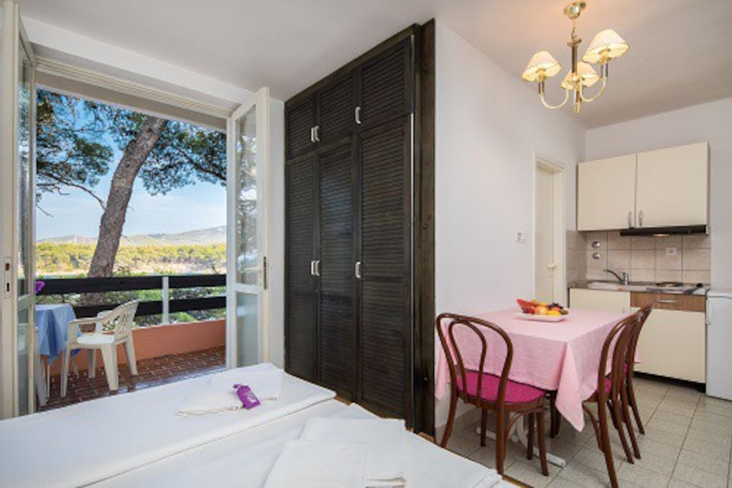 Comfort Studio apartment- kitchennet