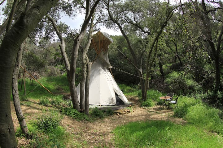 Clean, Quiet, Tipi w/WiFi, in Wilderness Near LA 2