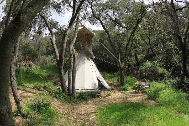 Clean, Quiet, Tipi w/WiFi, in Wilderness Near LA 2