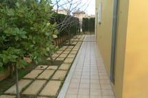 rodeada de jardin