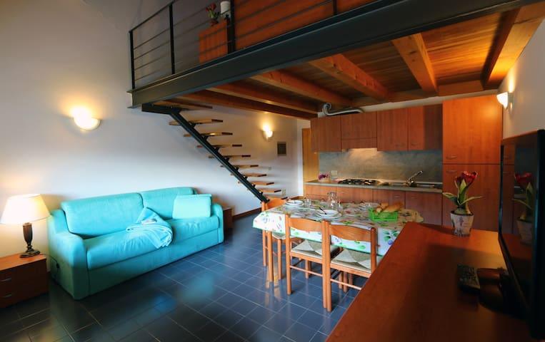 Residenza Casa Pesarina - Osais-pesariis - Pis