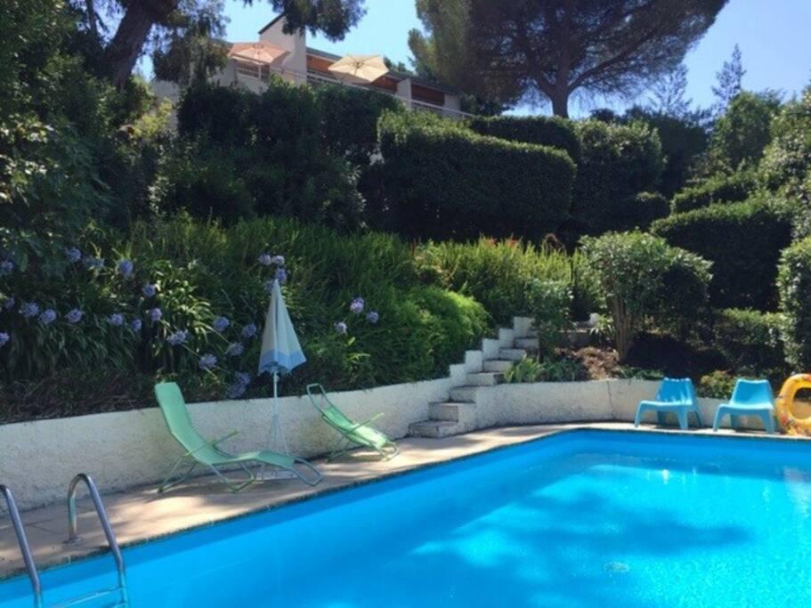 grande villa avec piscine super cannes villas louer vallauris provence alpes c te d 39 azur. Black Bedroom Furniture Sets. Home Design Ideas