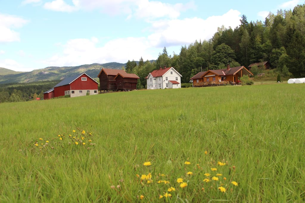 Our farm called Farmen Fløtterud. The yellow house with separate garden to the right is for rent.