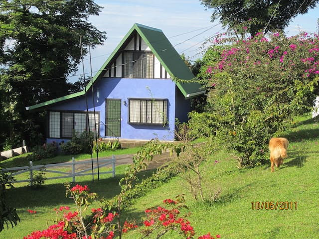 The Cucu Coffee Plantation Lodge - Naranjo - Cabana