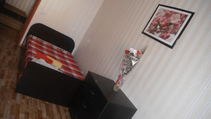 Комфортные апартаменты в городе Сергиевом Посаде