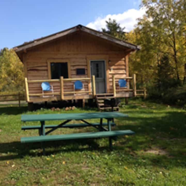 """Catskill Mt. """"Equinuck"""" Cabin"""