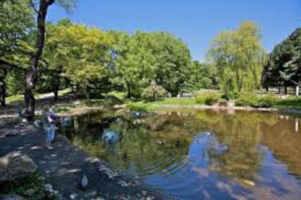 St.hanshaugen park