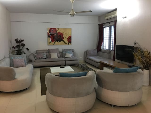 Full Furnished Luxurious Apartment