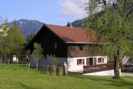 Villa French Alps near Geneva - Chevenoz - วิลล่า