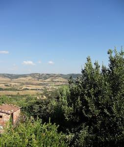 Caratteristico bilocale in Saturnia - Manciano