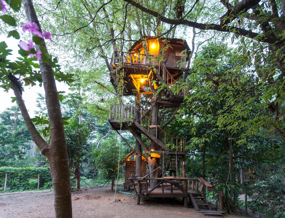 Vietnam Treehouse Part - 43: Now We Have 6 Cottage Treehouse And 2 Family Treehouse To Welcome Our  Guests From All Over The World. Each Unique Treehouse Was Designed And  Built With Love ...