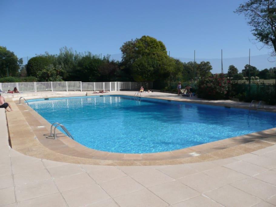 Grand studio piscine pr s des plage appartements louer for Piscine mandelieu