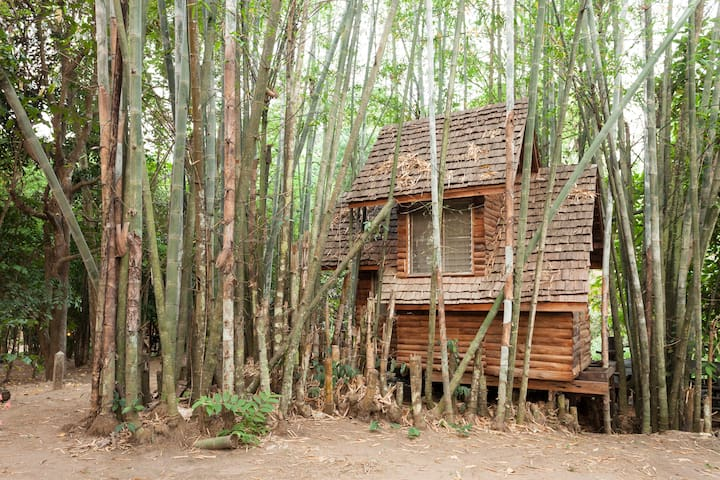 Bamboo Cottage Treehouse