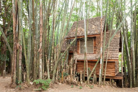 Bamboo Cottage Treehouse