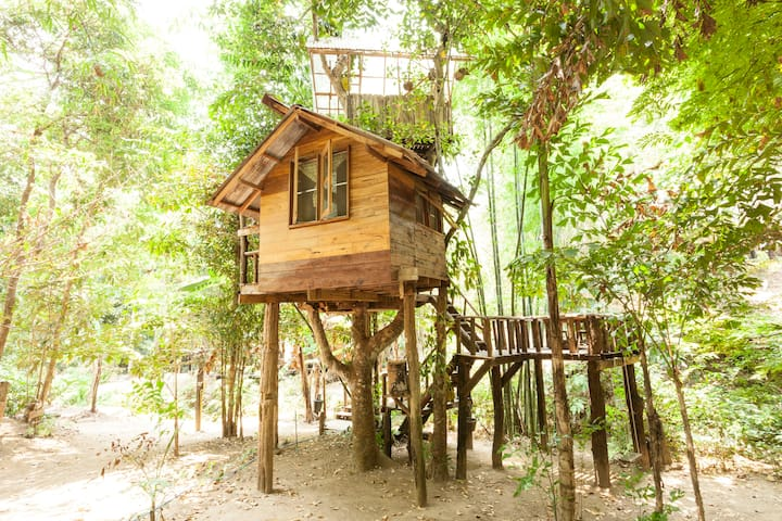 Jackfruit Cottage Treehouse