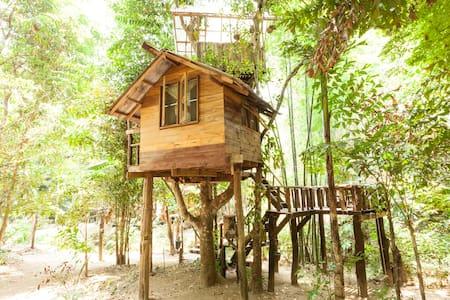 Jackfruit Cottage Treehouse