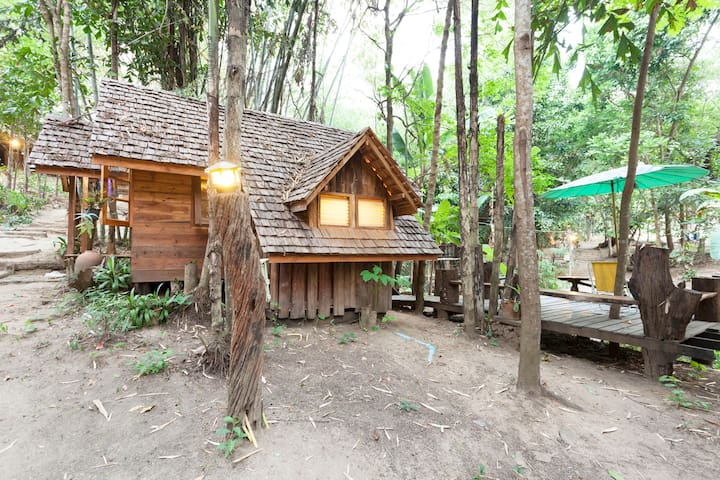 The top 20 treehouses for rent in chiang mai airbnb for 8 living room tree houses powys