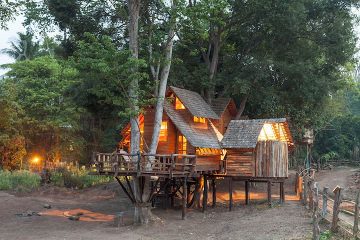 Star (Chomdao)Family Treehouse