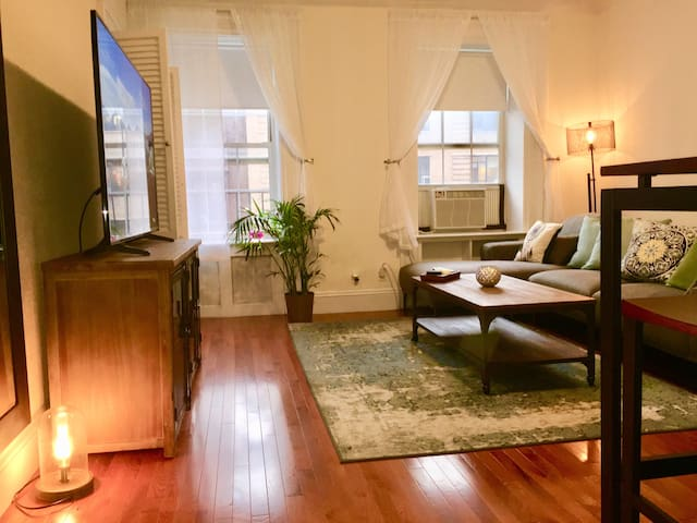 Cozy Beautiful GRAMERCY PARK 1 bedroom-Downtown