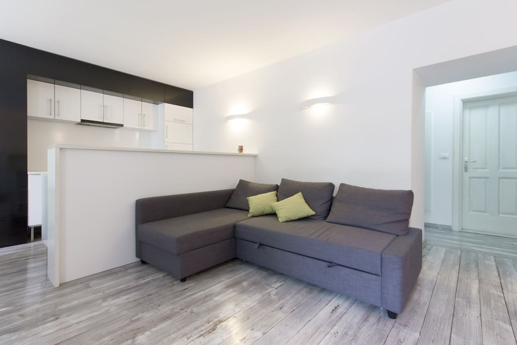 Lving room with sofa bed