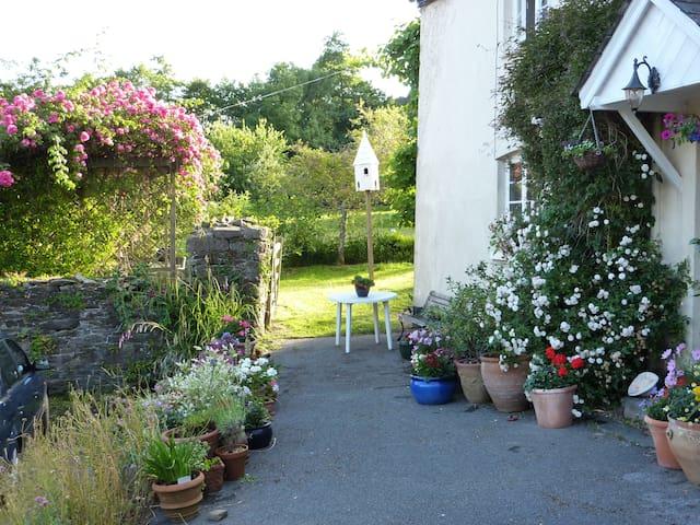 Hideaway 17th century Devon cottage - Totnes - House