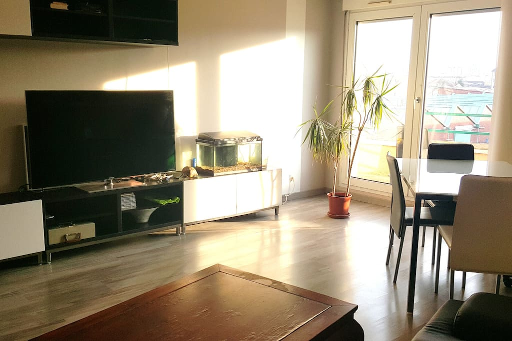 *Salon *living room