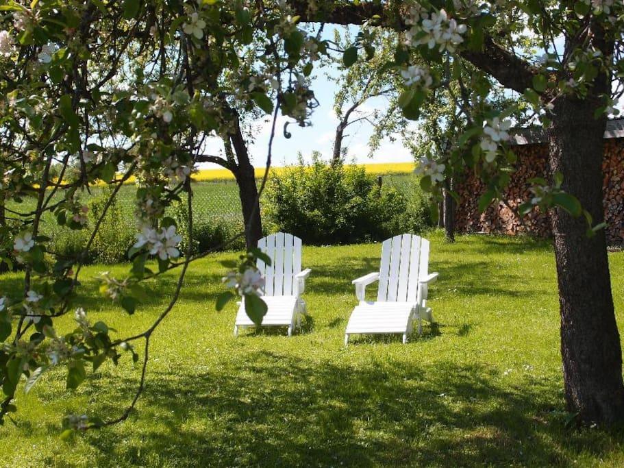 Eingezäunter Garten zur Alleinnutzung