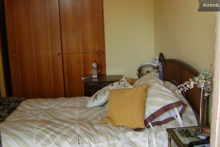 Share my Flat in Providencia - Santiago - Wohnung