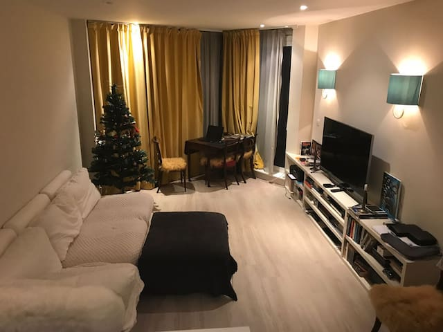 Beautiful London room home with River view and gym